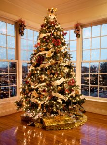 Beautiful Christmas tree in the living room